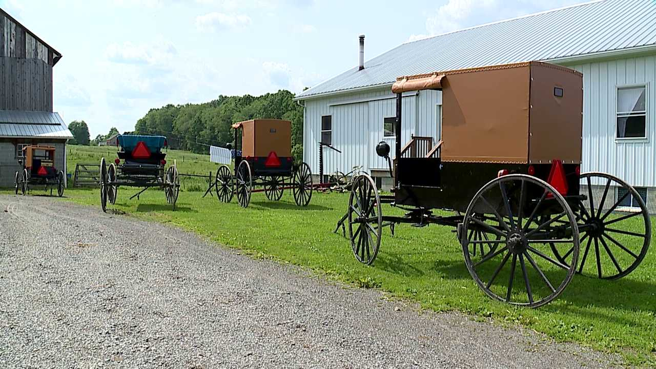 Amish in Lawrence County