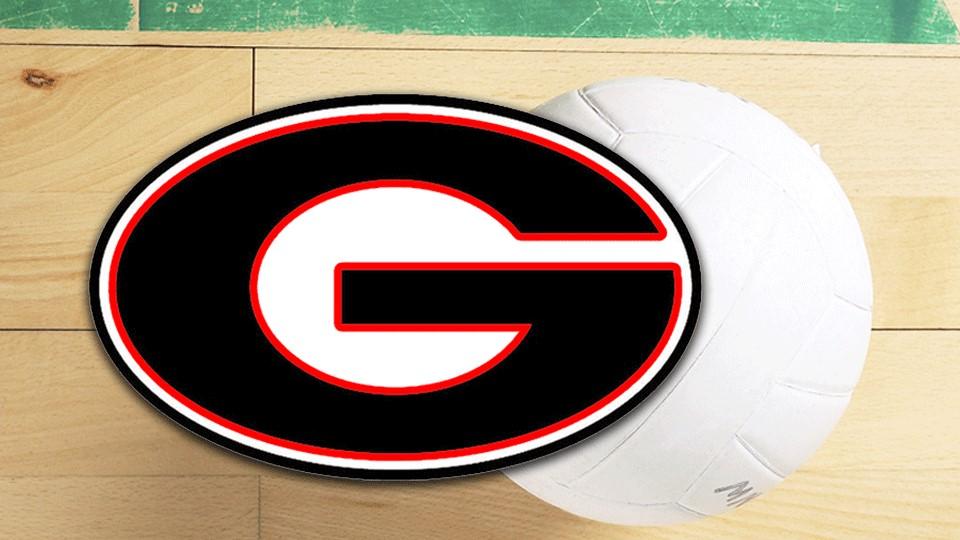Girard volleyball generic