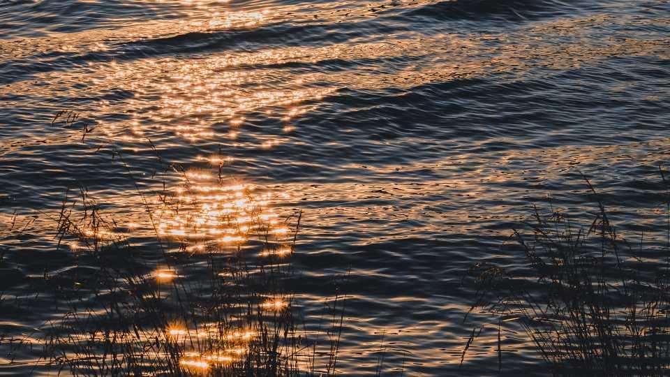 River, stream, water, generic