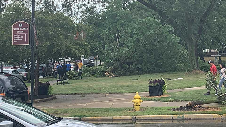 Viewers are reporting storm damage in Warren, including large trees down in the area.
