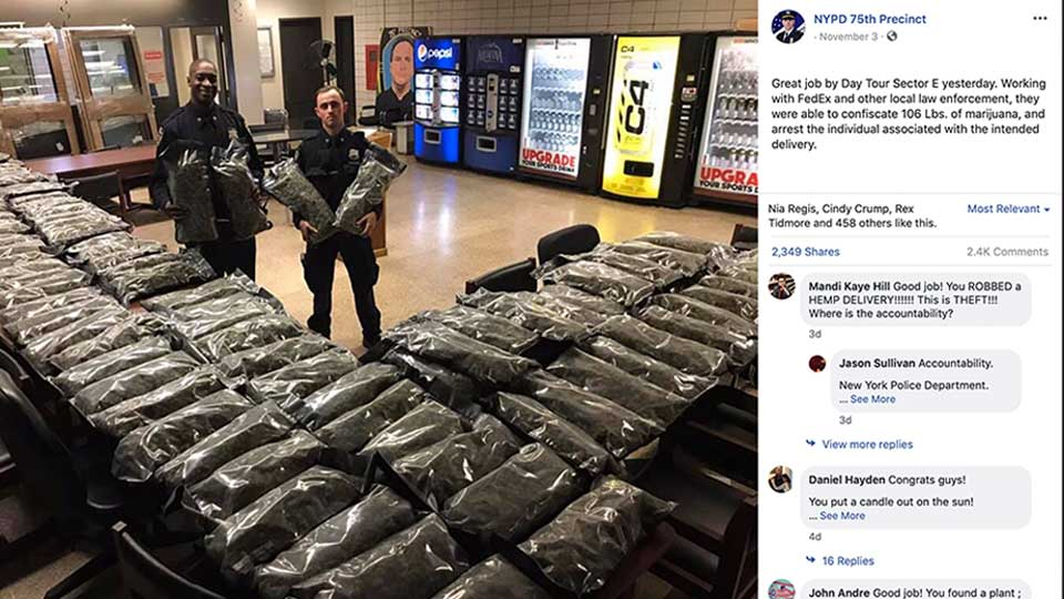 In this undated photo taken from the New York Police Department Facebook page, officers stand by what NYPD thought was marijuana when they confiscated in the Brooklyn borough of New York on Saturday, Nov. 2, 2019, at the 75th Precinct of the NYPD in New York. The Vermont farm that grew the plants and the Brooklyn CBD shop that ordered them insist they're not pot, but legal industrial hemp.