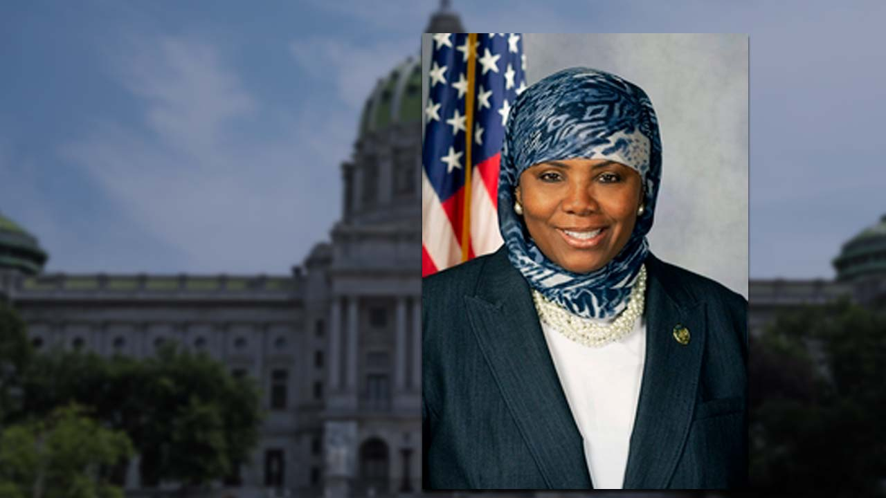 Rep. Movita Johnson-Harrell will resign from the PA statehouse on theft allegations.