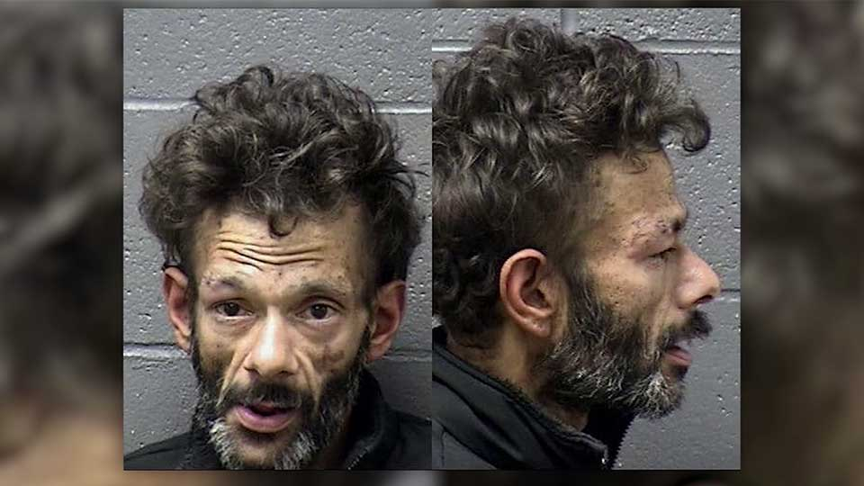Shaun Weiss arrested