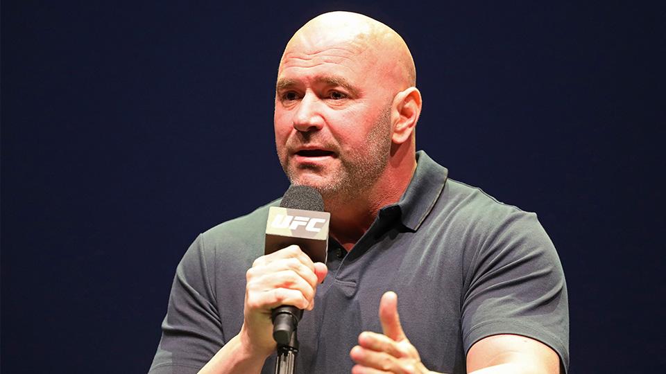UFC 249 Canceled Mixed Martial Arts