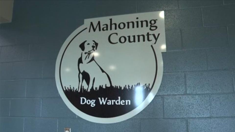 Mahoning County Dog Warden