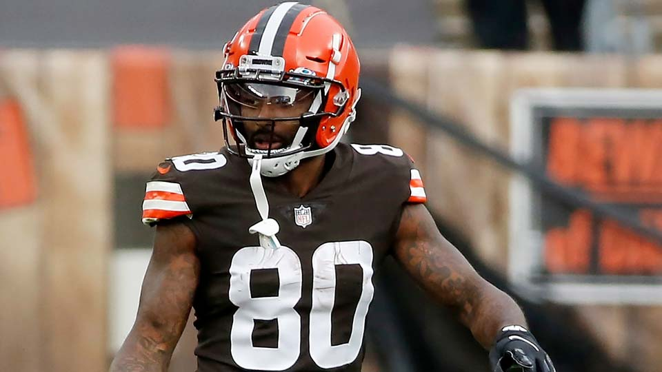 Cleveland Browns wide receiver Jarvis Landry (80)