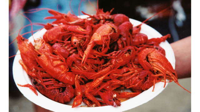 CRAWFISH3_1507567583892_27528861_ver1.0_640_360_1522371516591.jpg