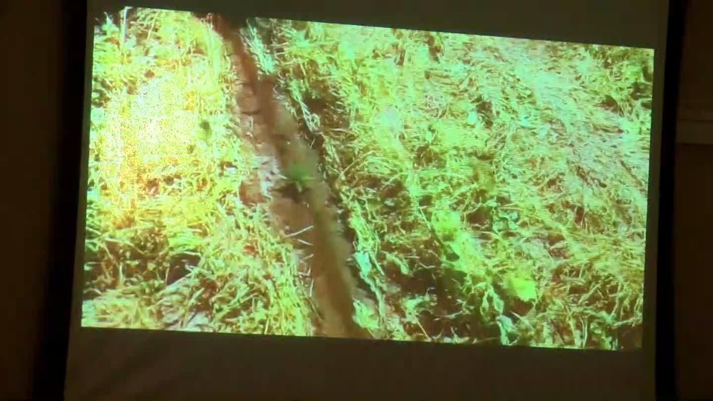 VIDEO: Meeting held to discuss hemp farming in Baldwin County