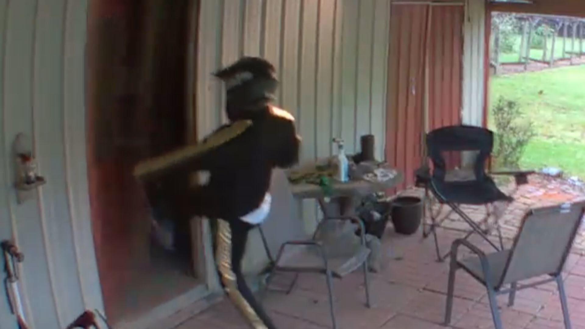 VIDEO___Grand_Bay_crime_caught_on_camera_0_20190406121233