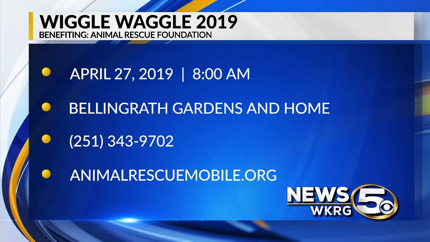 """Wiggle Waggle 2019"" is your chance to help homeless animals"