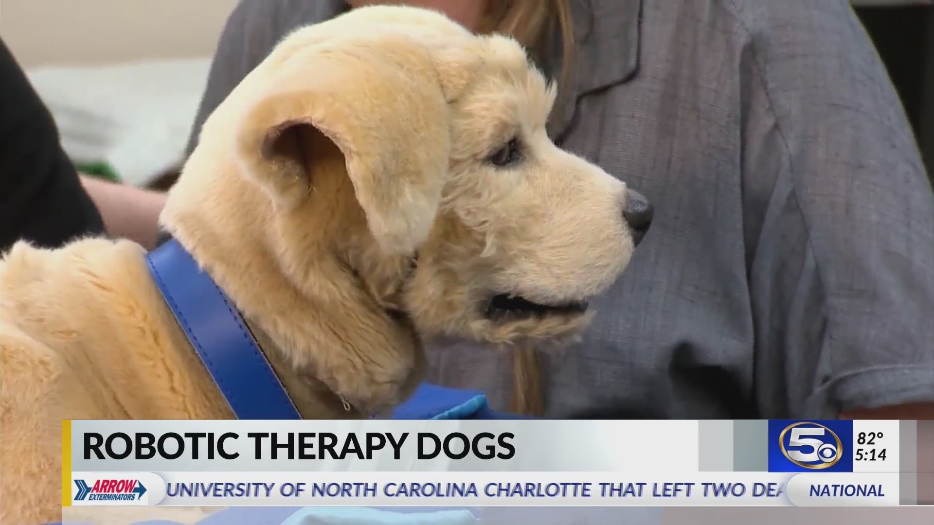 VIDEO: Robo Therapy Dogs offer companionship, anxiety relief