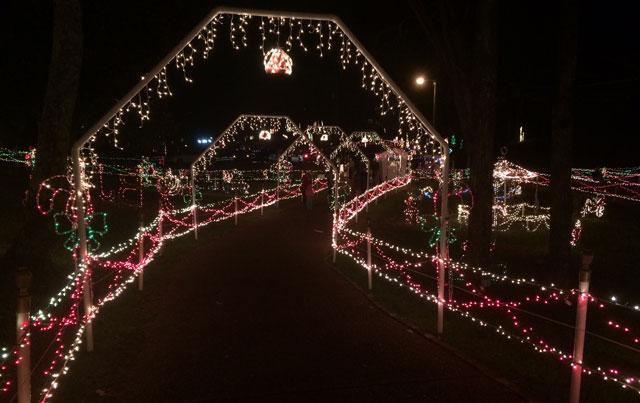 Sunnyside Christmas Lights, Brentwood_346757