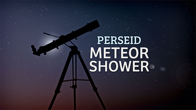 Perseid Meteor Shower_433521