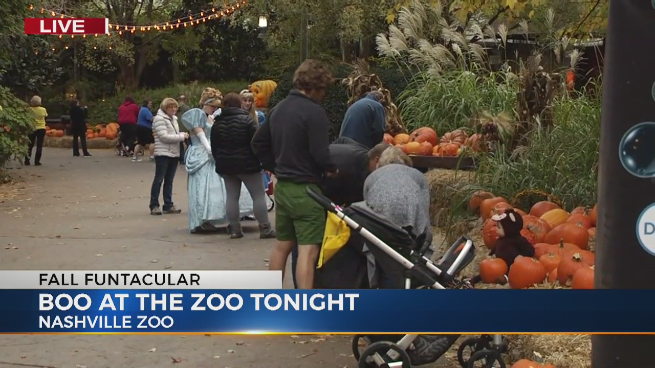 Boo at the Zoo_455500