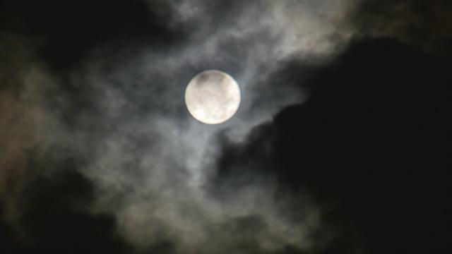 Moon_449684