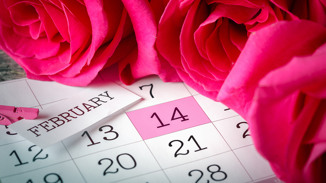 valentines-day_1516743115605_335680_ver1-0_32529009_ver1-0_640_360_479493