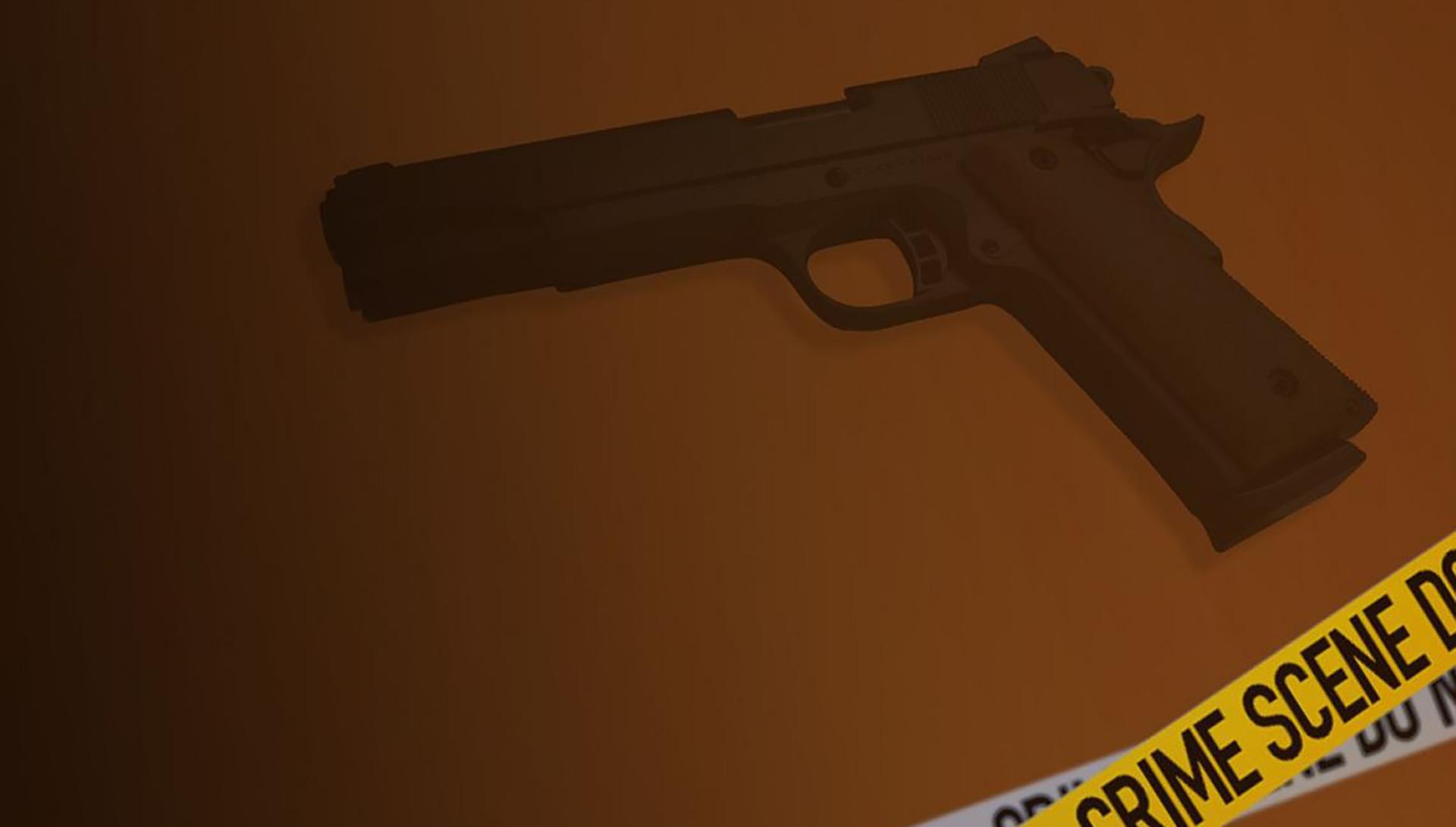 Gun_1523731906819.JPG