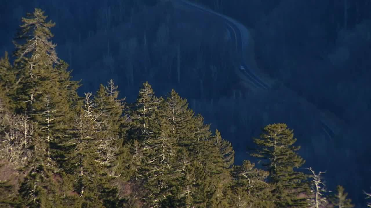 Great_Smoky_Mountains_reopened_after_shu_6_20190127125739