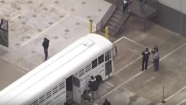 Texas company immigration arrests
