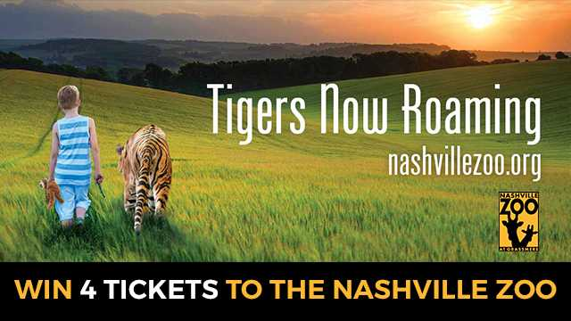 Watch to Win tickets to 'Tigers Now Roaming' at the