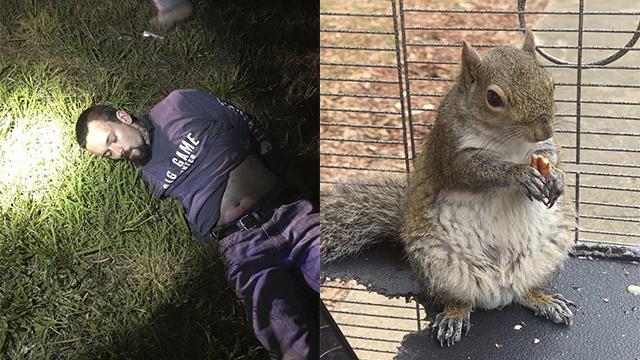 Mickey Paulk Alabama meth squirrel