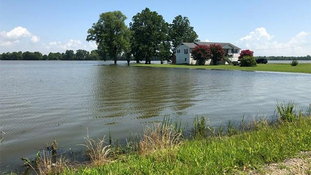 Ripley flooding