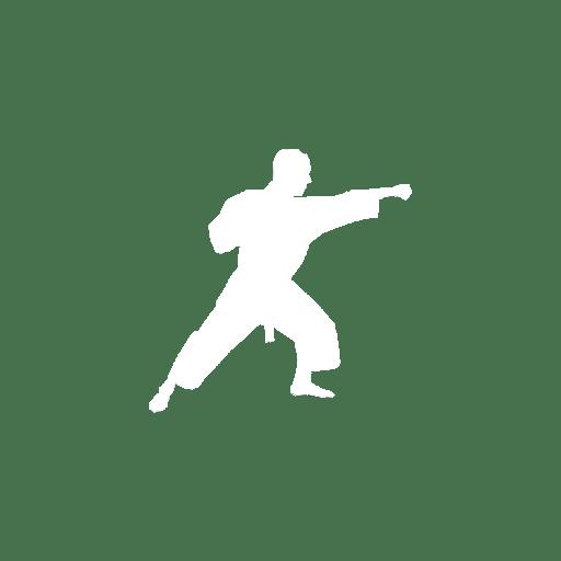 Wado-ryu Karatedo