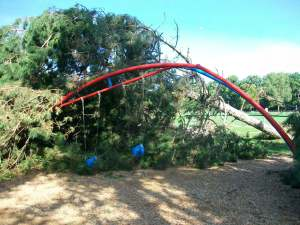 A popular play area for children is buried by the mature trees that fell.