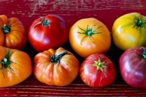 heirloom tomatos