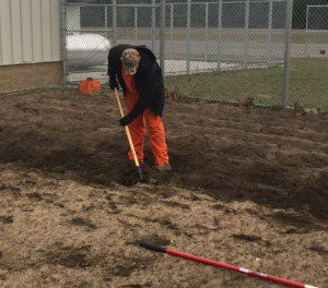 An inmate works in the garden at the Starke County F.A.R.M.