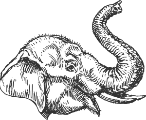 Illustration of an elephant with trunk up, filled with white