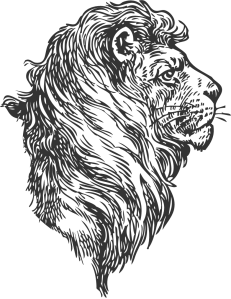 Illustration of a lion head for the Accelerator program