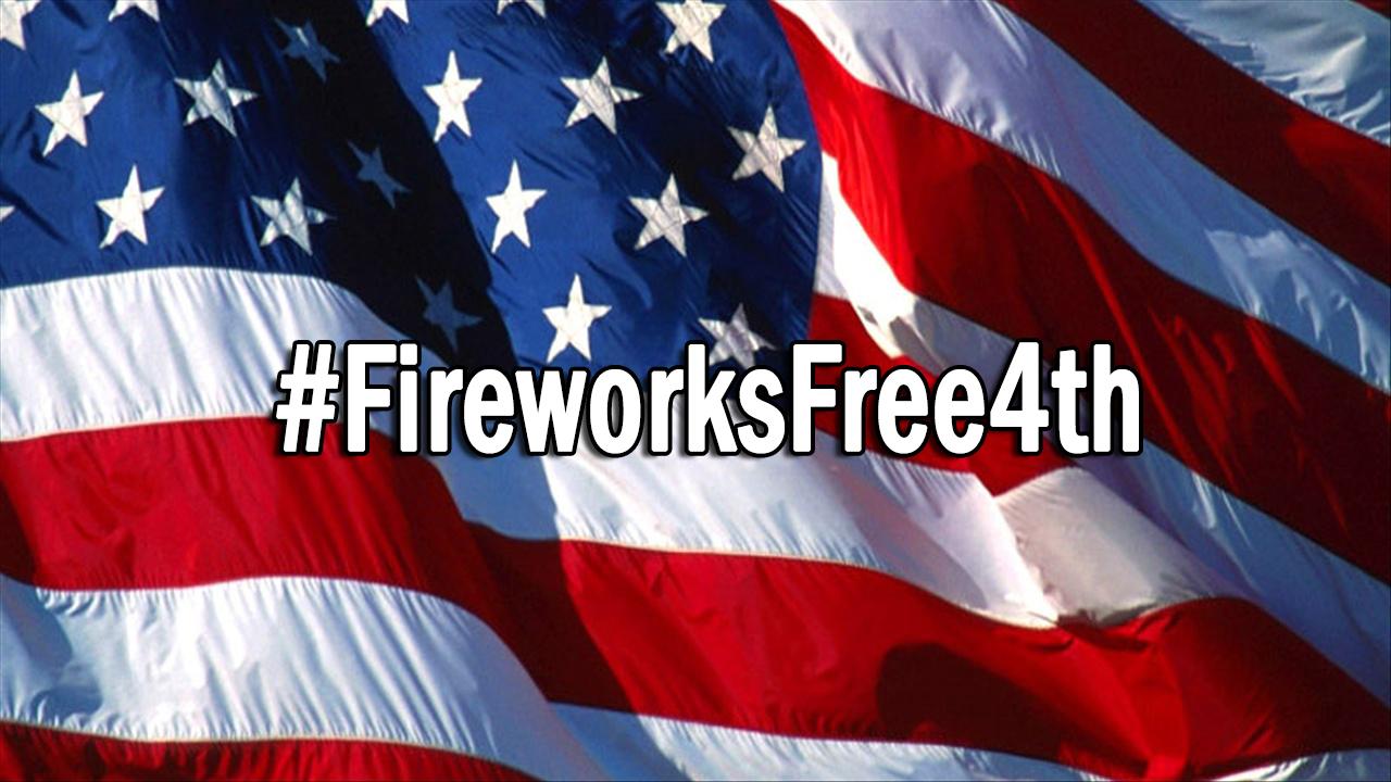 FireWorksFreeFourth_62177
