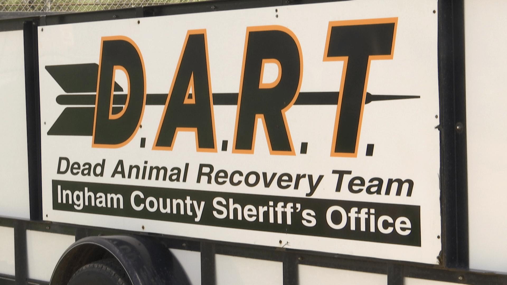 Dart Program_155527