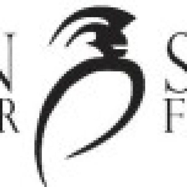 sdsf-logo-300x76_258842
