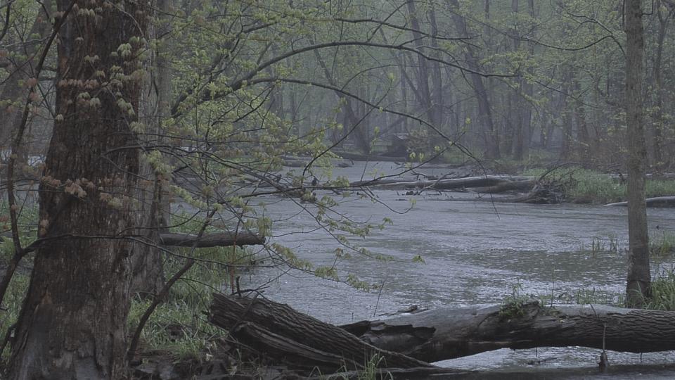red cedar river flooding_258559