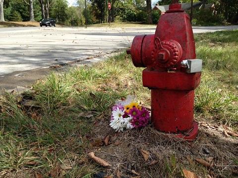 crash scene flowers_319620