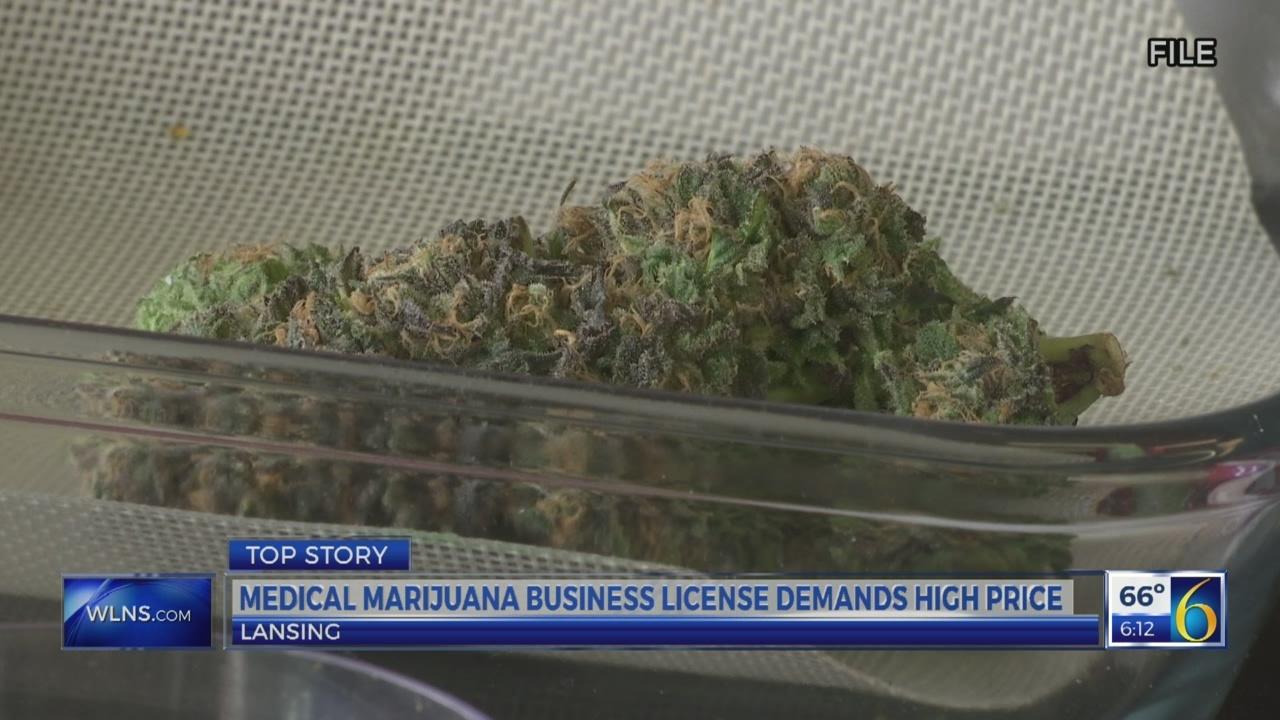 Medical marijuana business license demands high price