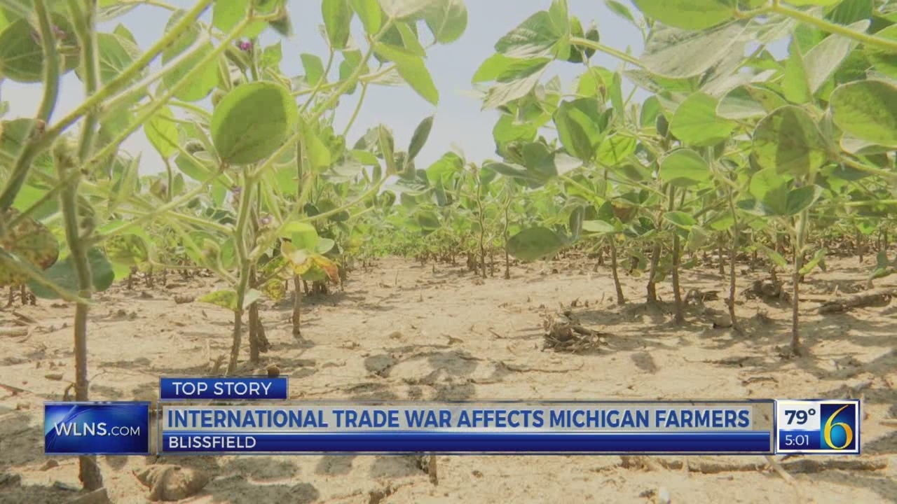Farmers affected by trade war