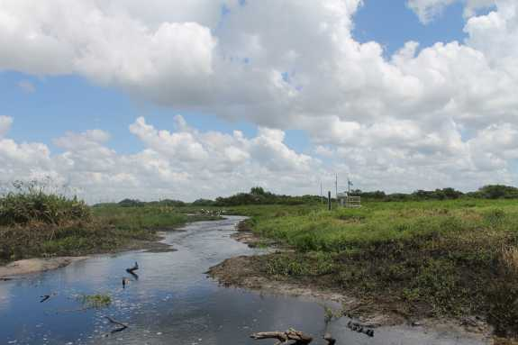 The Kissimmee River. Photo- Amy Green / WMFE