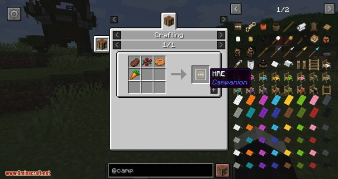 Campanion mod for minecraft 01