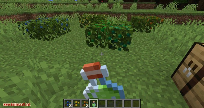 More Berries mod for minecraft 07