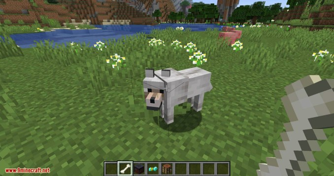 Wolves with armor mod for minecraft 05