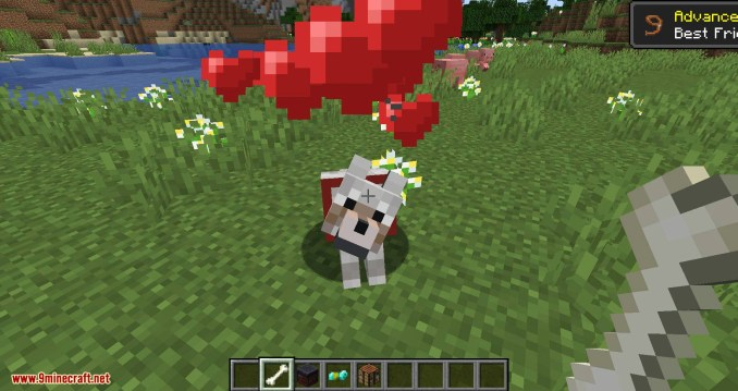 Wolves with armor mod for minecraft 06
