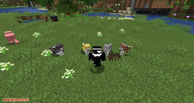 Wolves with armor mod for minecraft 08