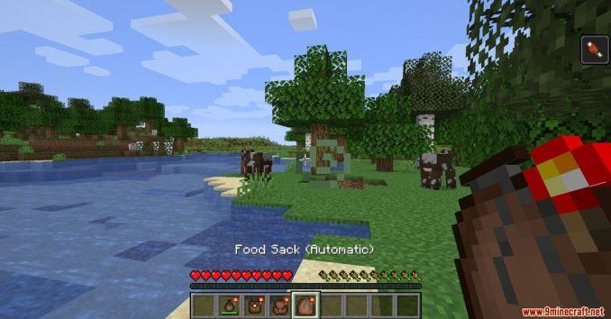 Food Pouches Mod Screenshots 6