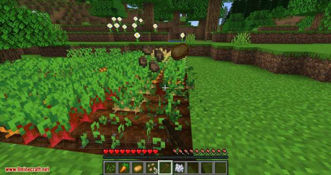 Replanting Crops mod for minecraft 07