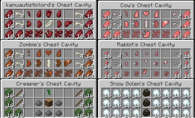 Chest Cavity Mod Screenshots 1