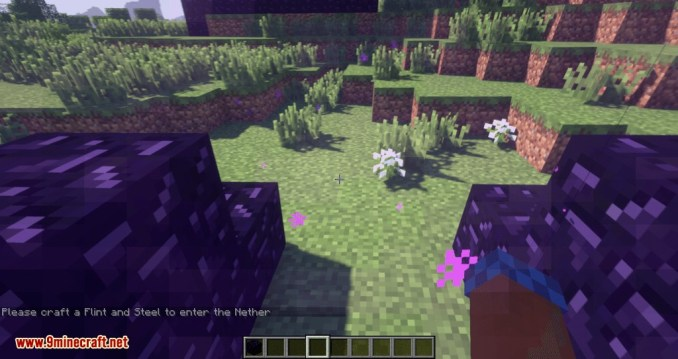 Restricted Portal mod for minecraft 05