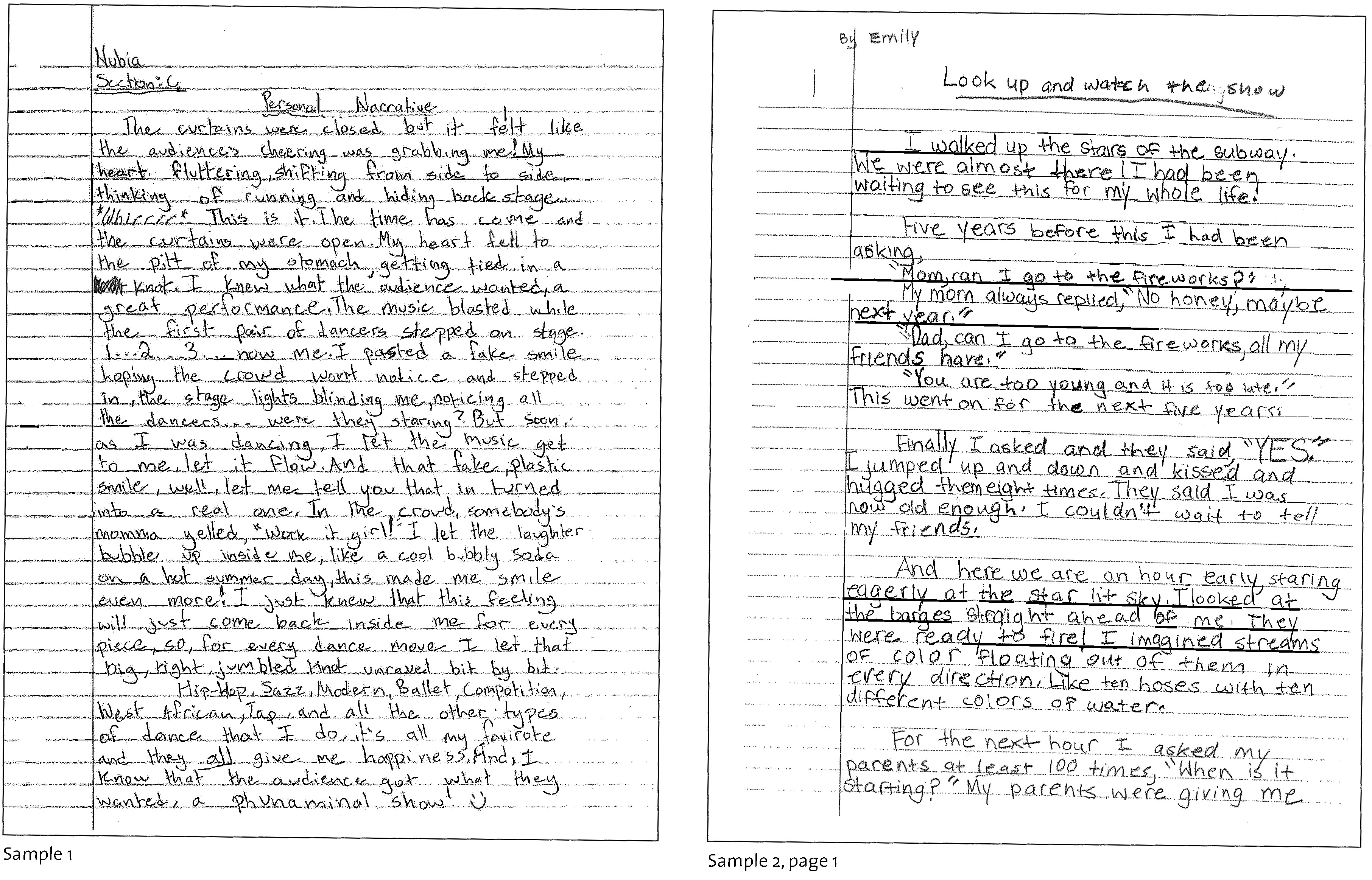 6th Grade Essay Example Expository Examples Informative